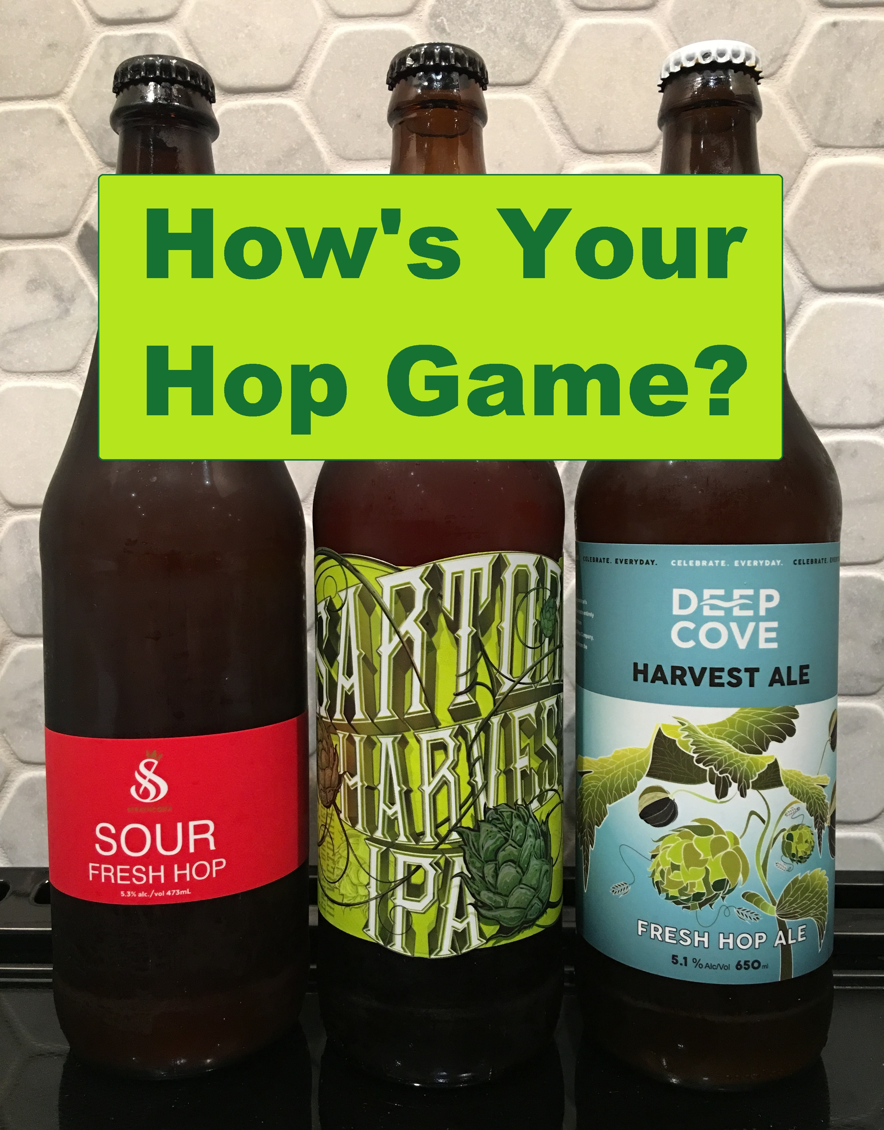 How's Your Hop Game?